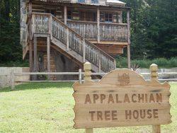 Yogi Bear's Tree House